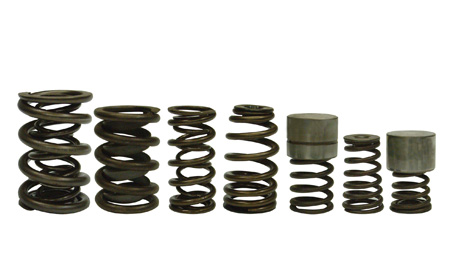 valve springs come in a variety of sizes and configurations   <div  class=